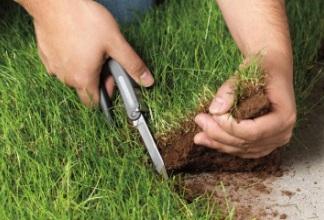 Особенности процедуры раздела земли на доли.