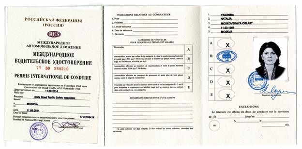 Как выглядит водительское удостоверение международного образца
