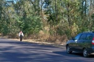 Как должен идти пешеход по дороге