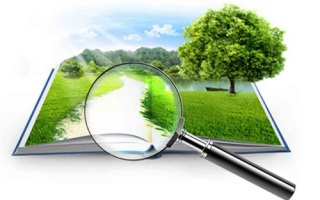 Оформление и вступление в наследство на земельный участок