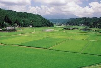 Выкуп земельного участка государственными или муниципальными органами как вариант изъятия земельного участка.
