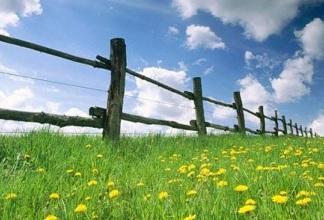 Основания для изъятия земельного участка у собственника.