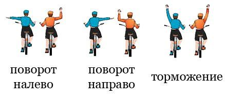 Сигналы, подаваемые велосипедистом