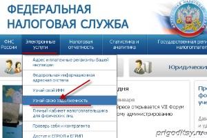 Проверка задолженности через сайт ФНС и ФССП